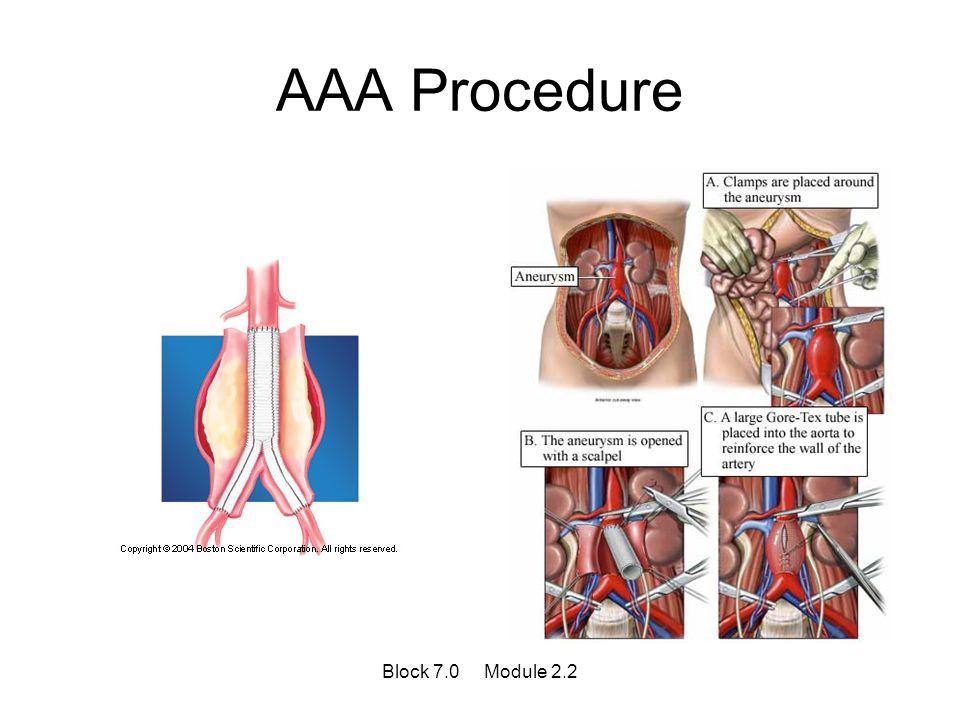 AAA Procedure Block 7.0 Module 2.2