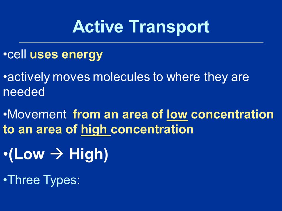 Active Transport (Low  High) cell uses energy