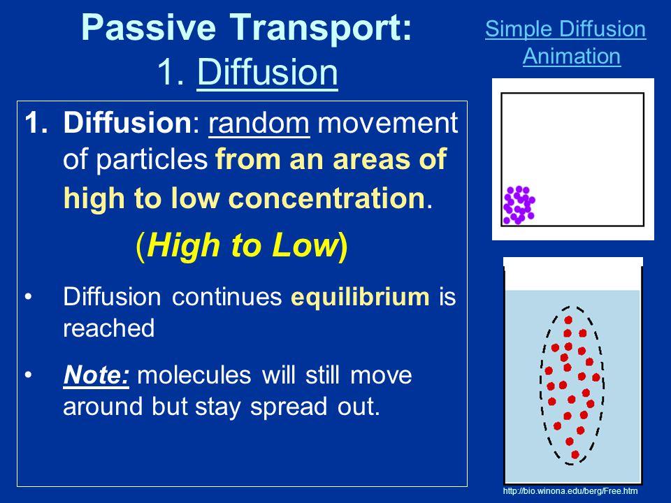 Passive Transport: 1. Diffusion