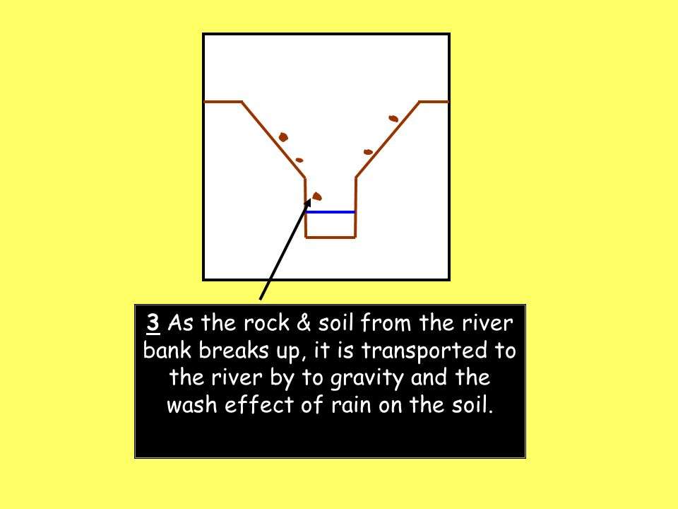 3 As the rock & soil from the river bank breaks up, it is transported to the river by to gravity and the wash effect of rain on the soil.