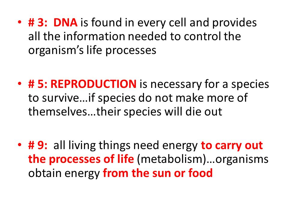 # 3: DNA is found in every cell and provides all the information needed to control the organism's life processes