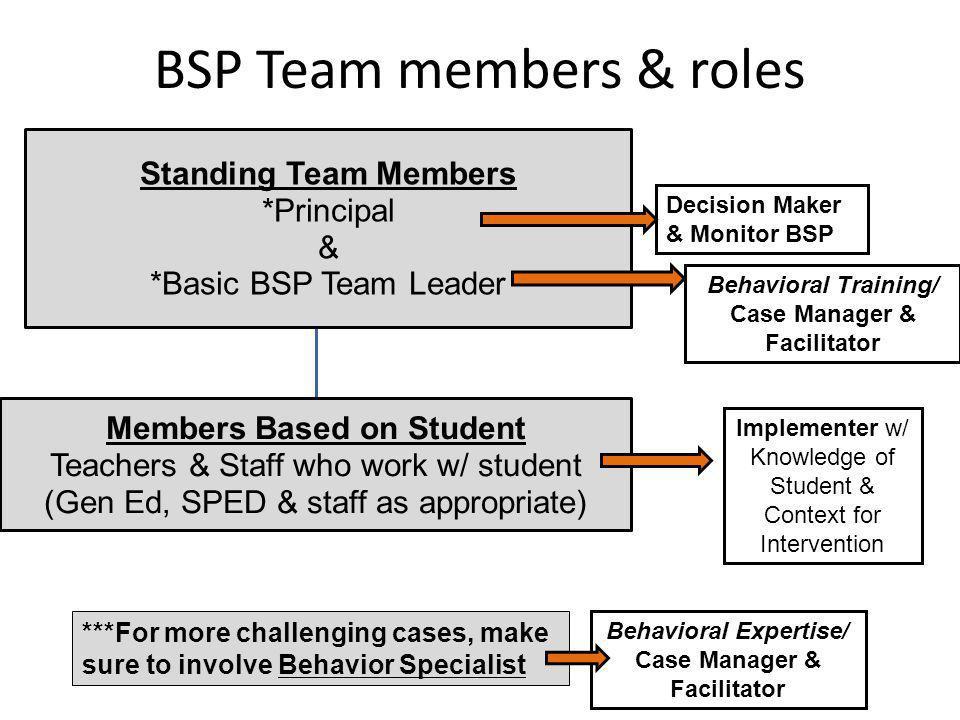 BSP Team members & roles