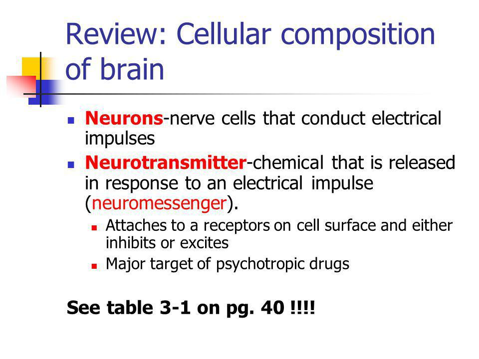 Review: Cellular composition of brain