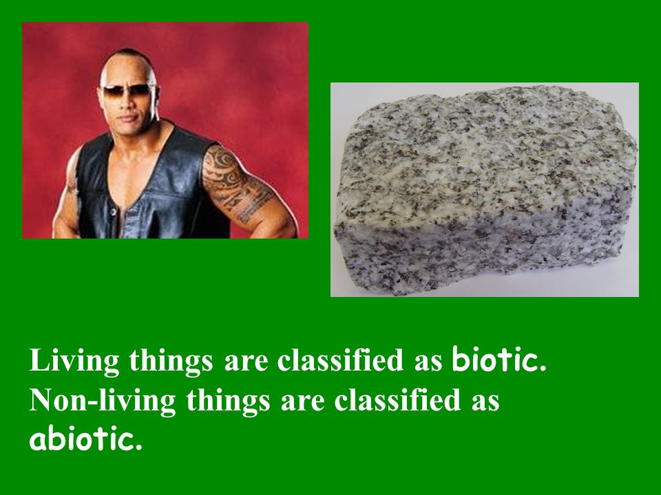 Living things are classified as biotic