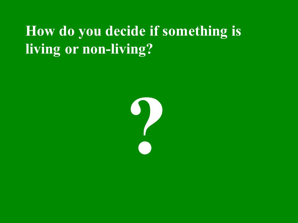 How do you decide if something is living or non-living