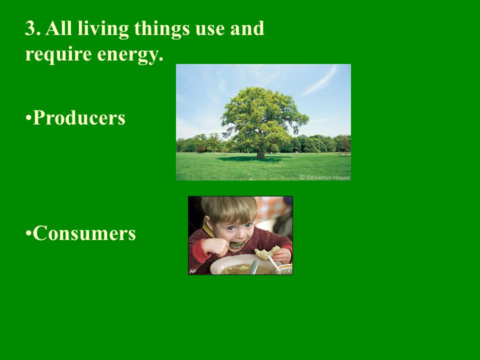 3. All living things use and require energy.