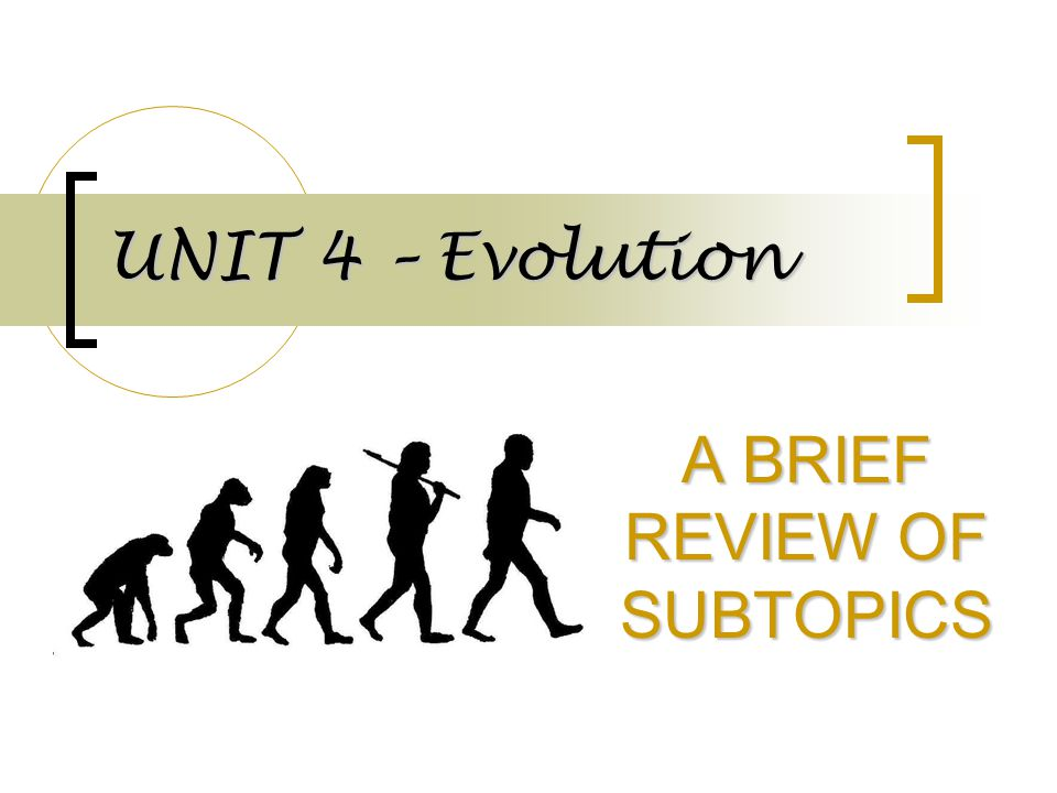 A BRIEF REVIEW OF SUBTOPICS
