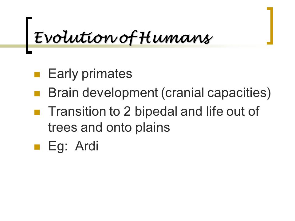 Evolution of Humans Early primates