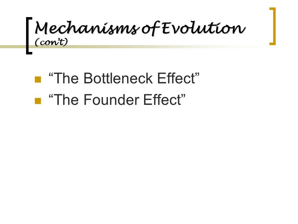 Mechanisms of Evolution (con't)