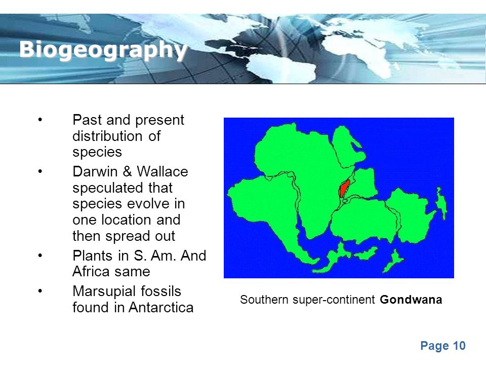 Biogeography Past and present distribution of species