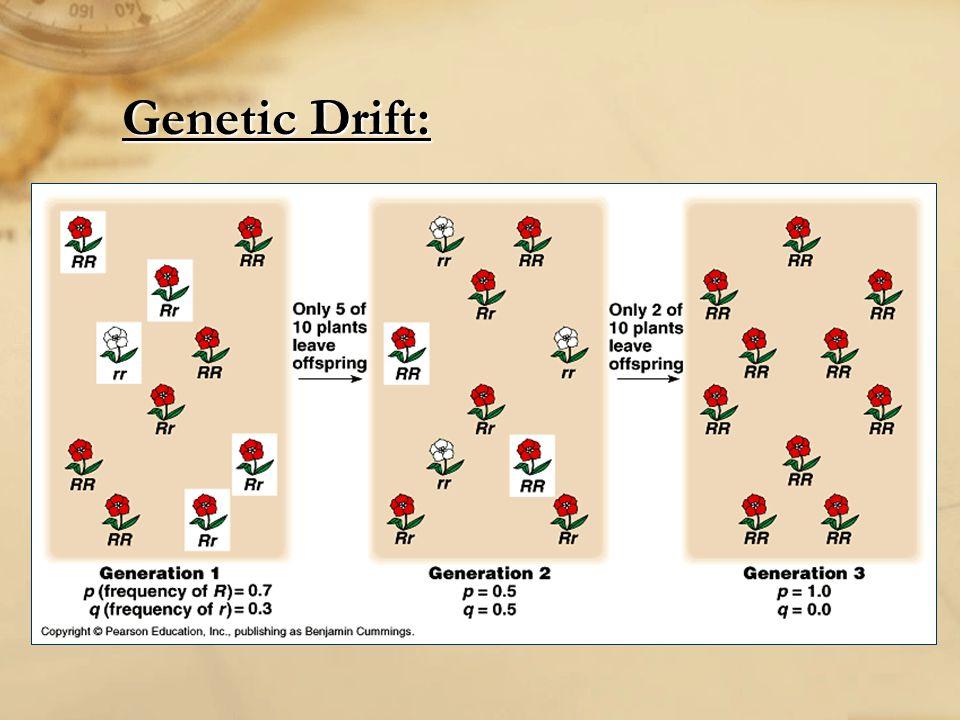Genetic Drift: