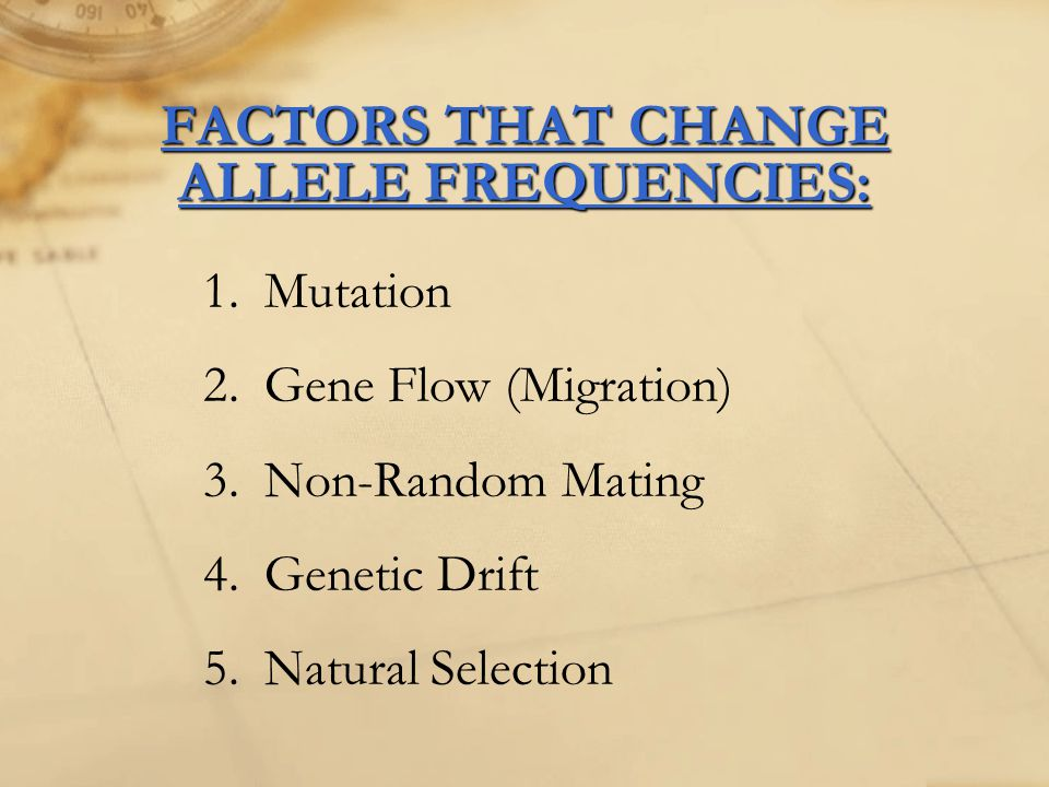 FACTORS THAT CHANGE ALLELE FREQUENCIES: