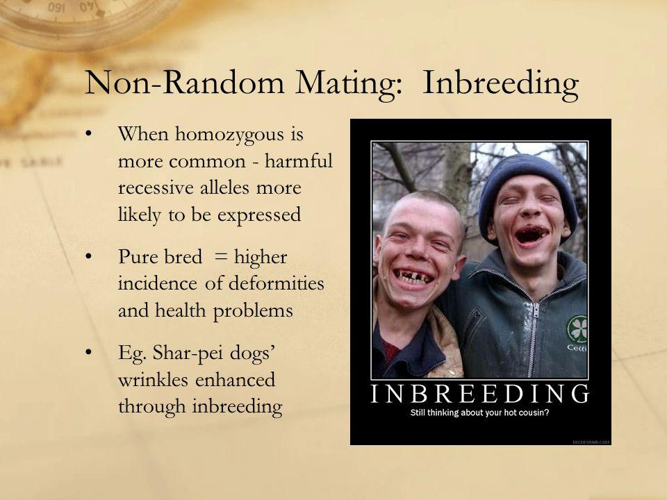 Non-Random Mating: Inbreeding