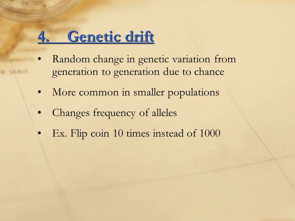 4. Genetic drift Random change in genetic variation from generation to generation due to chance. More common in smaller populations.