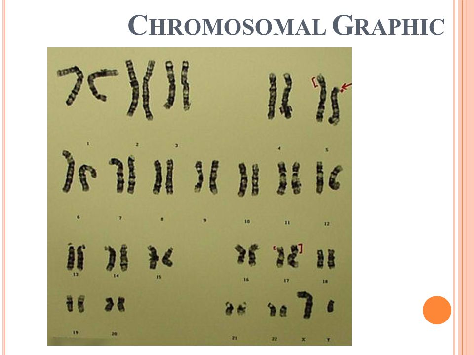 Chromosomal Graphic