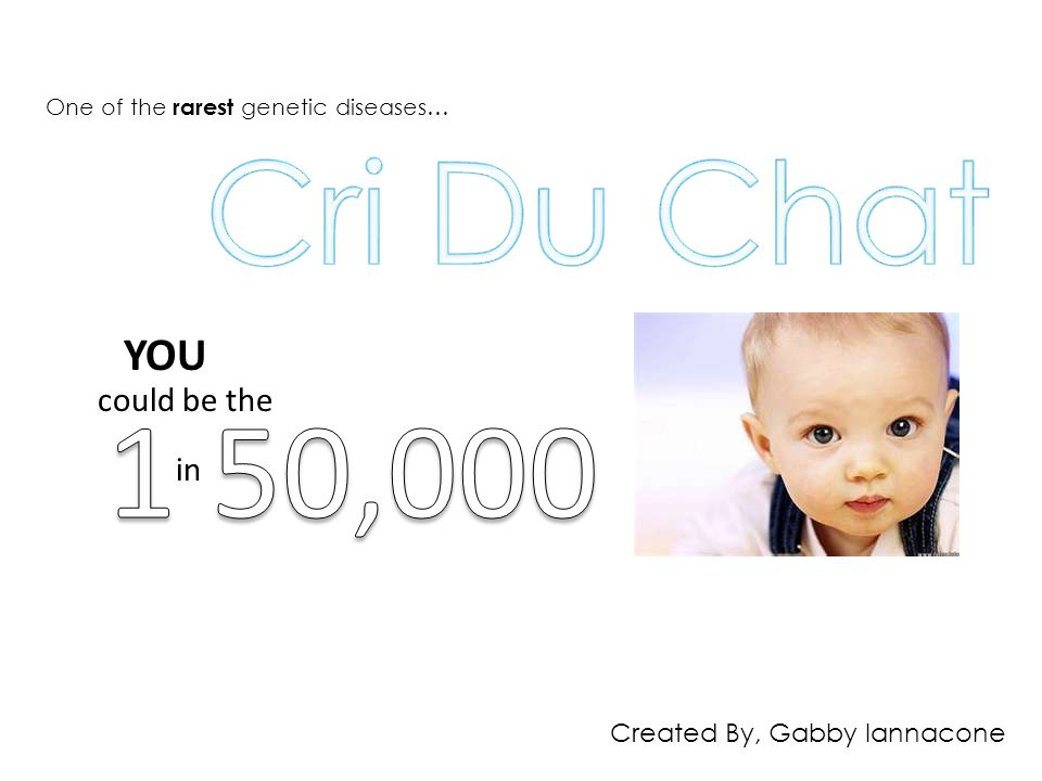 Cri Du Chat 1 50,000 YOU could be the in Created By, Gabby Iannacone