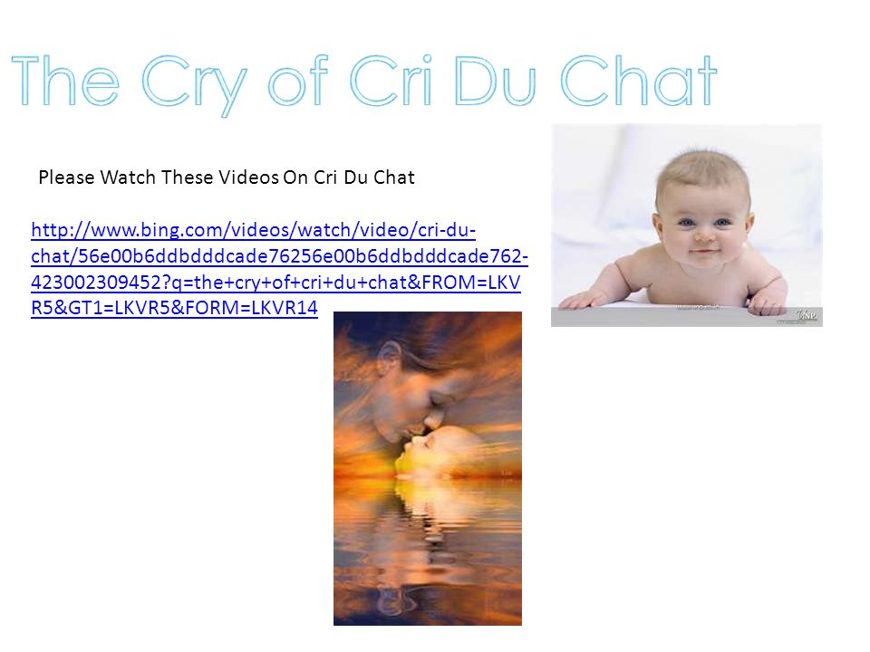 The Cry of Cri Du Chat Please Watch These Videos On Cri Du Chat