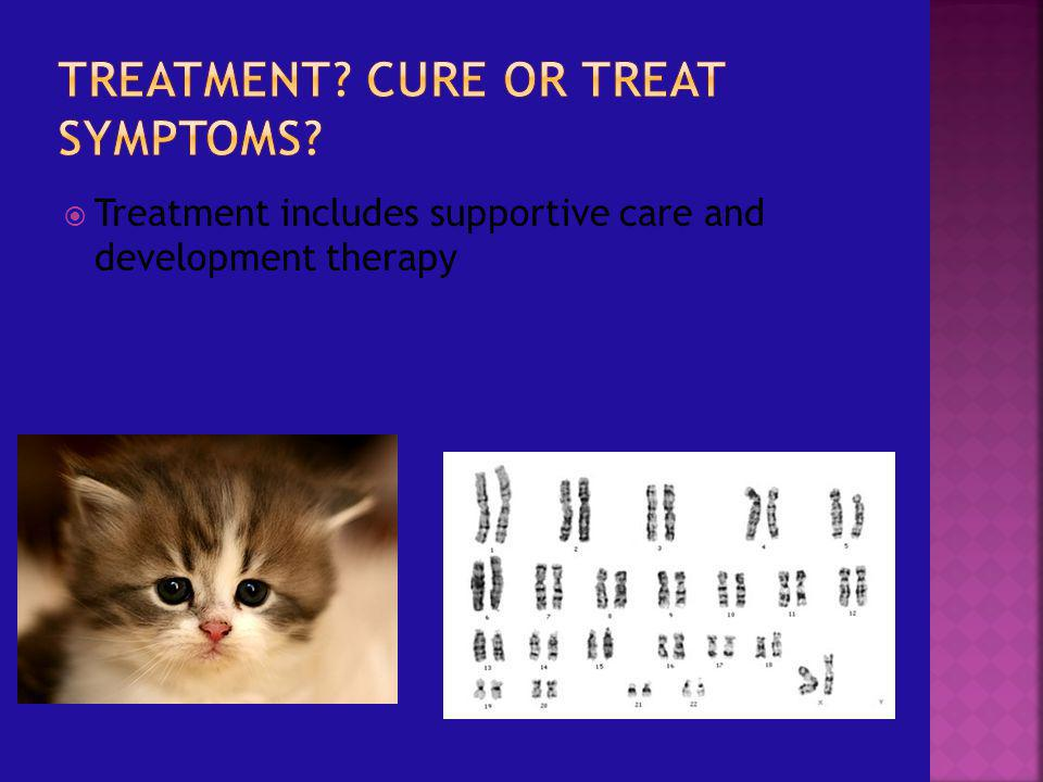 Treatment Cure or treat symptoms