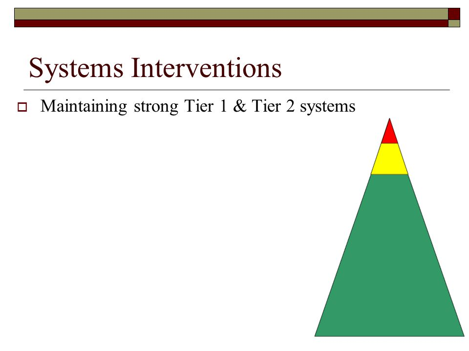 Systems Interventions