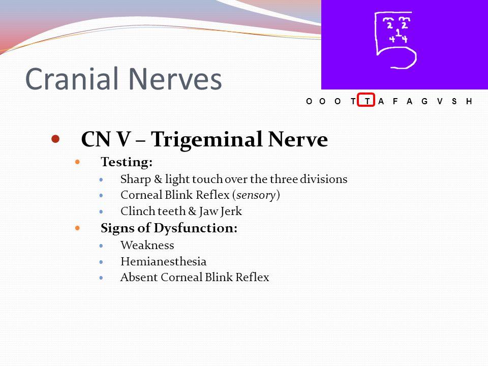 Cranial Nerves CN V – Trigeminal Nerve Testing: Signs of Dysfunction: