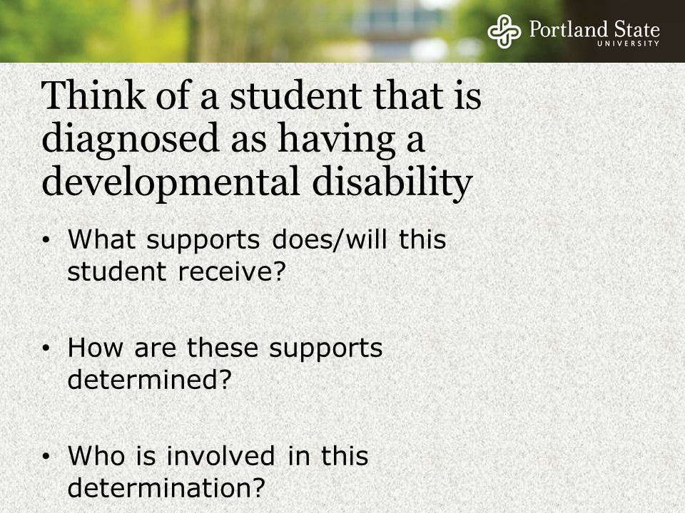 Think of a student that is diagnosed as having a developmental disability