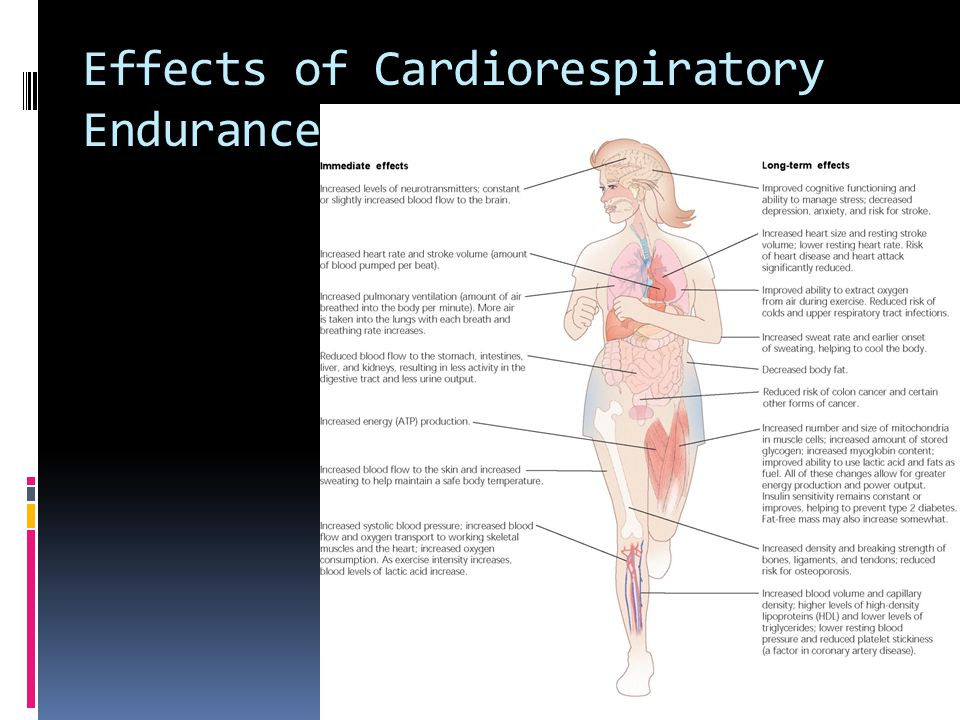 Effects of Cardiorespiratory Endurance