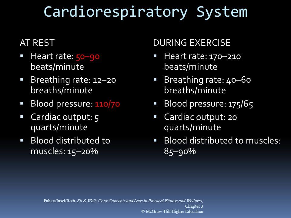 Cardiorespiratory System