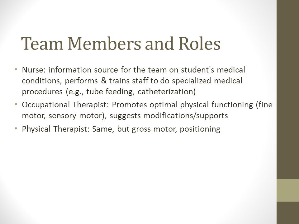 Team Members and Roles