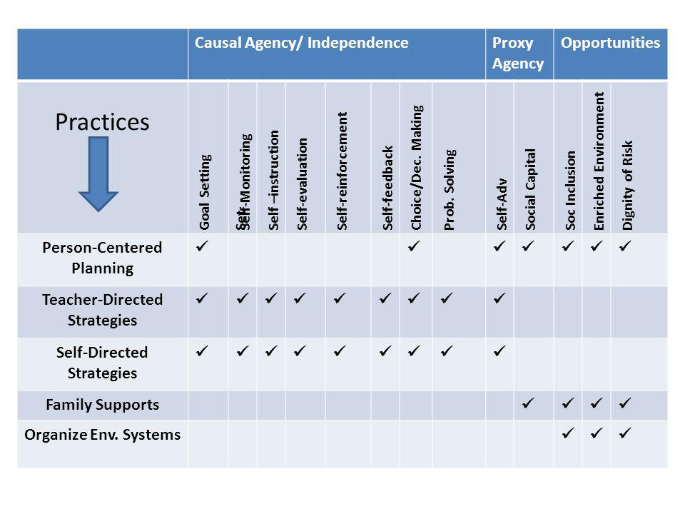 Practices Causal Agency/ Independence Proxy Agency Opportunities