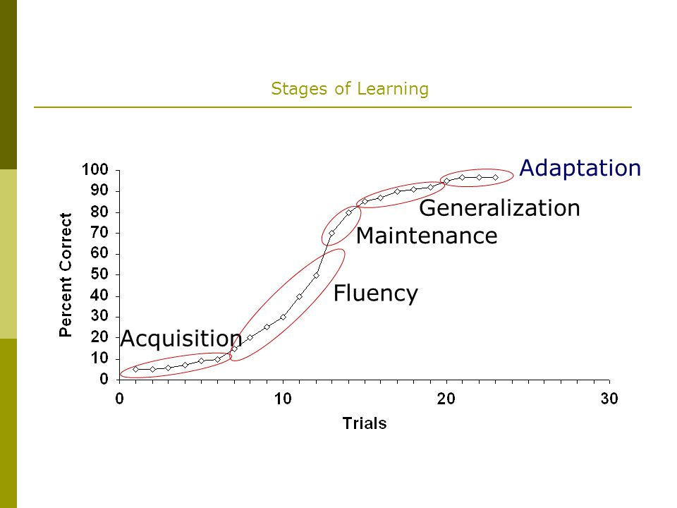 Adaptation Generalization Maintenance Fluency Acquisition