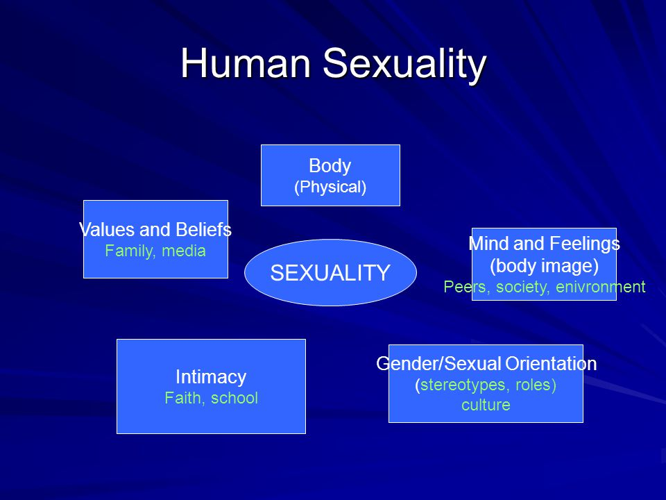 Human Sexuality SEXUALITY Body Values and Beliefs Mind and Feelings