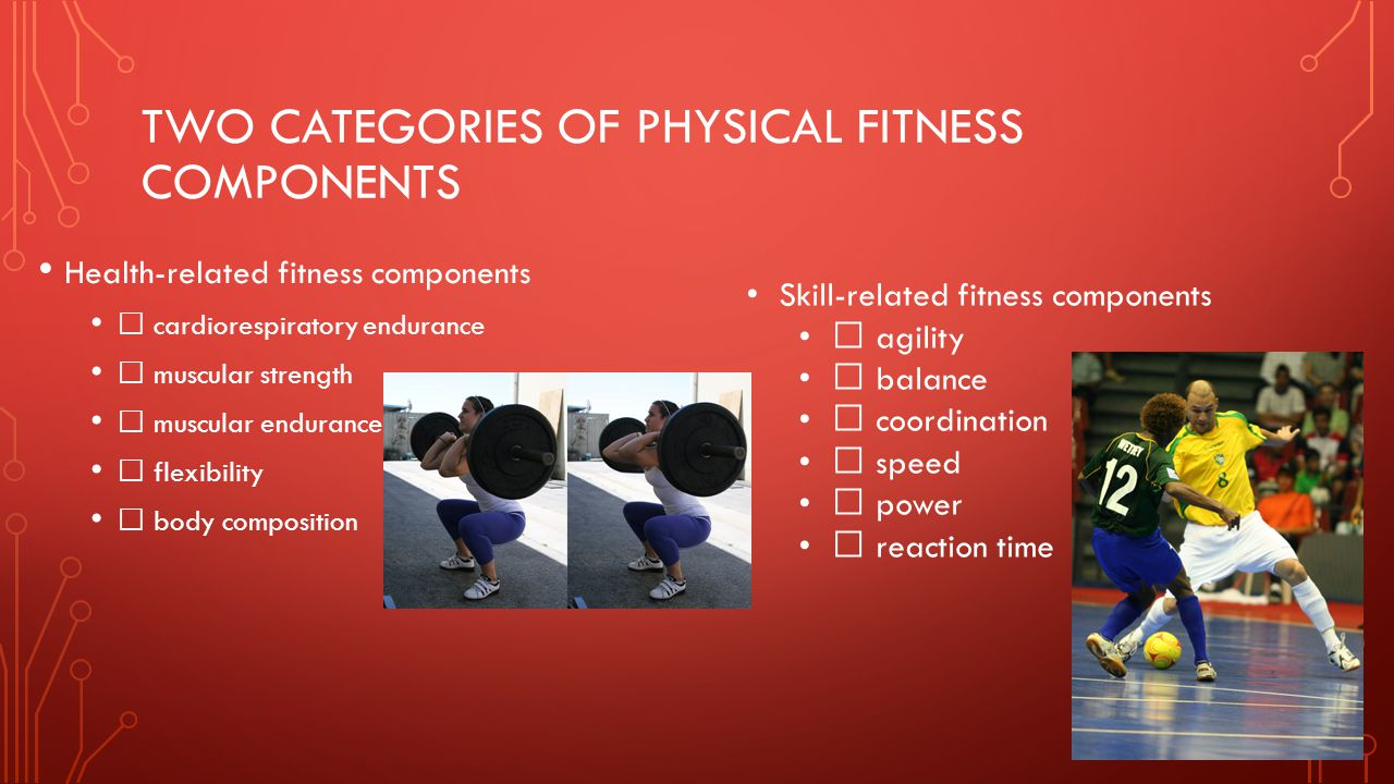 two categories of physical fitness components