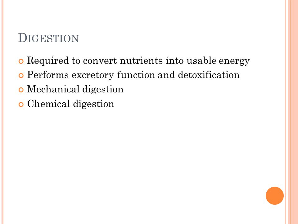 Digestion Required to convert nutrients into usable energy
