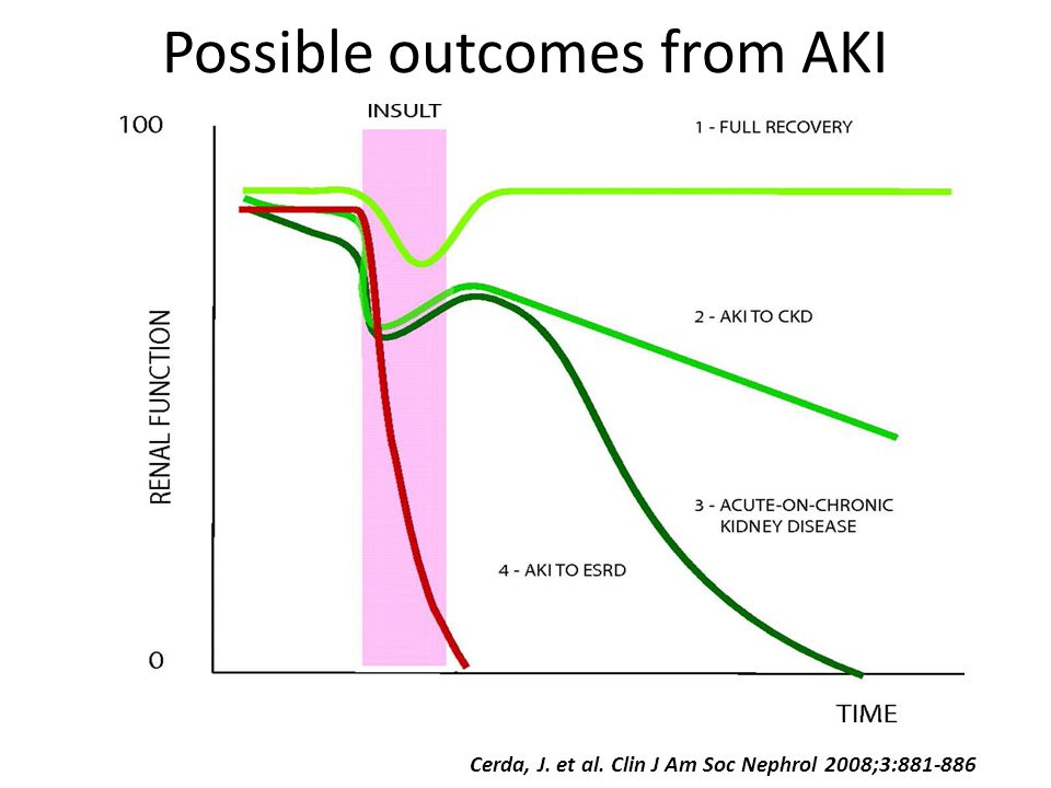 Possible outcomes from AKI