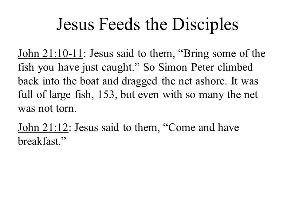 Jesus Feeds the Disciples