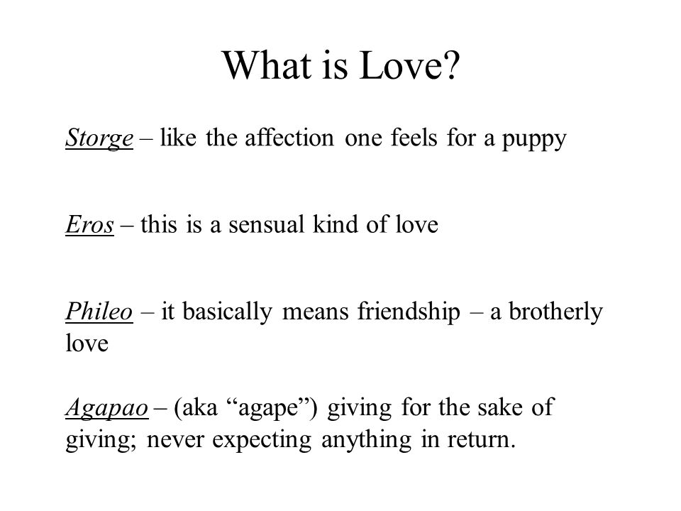What is Love Storge – like the affection one feels for a puppy