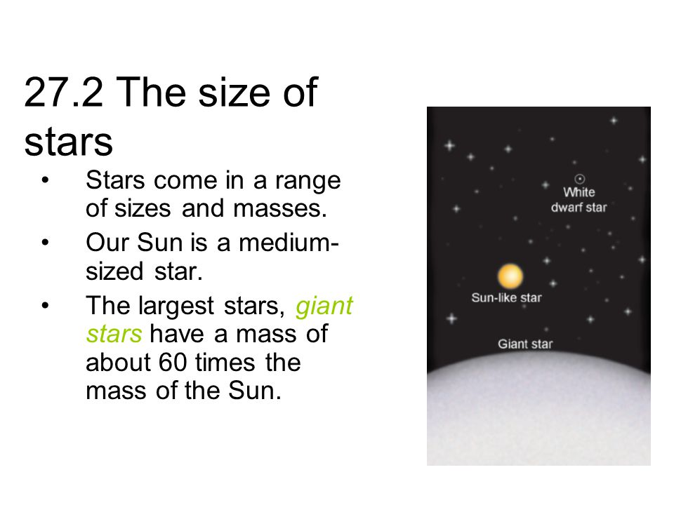27.2 The size of stars Stars come in a range of sizes and masses.