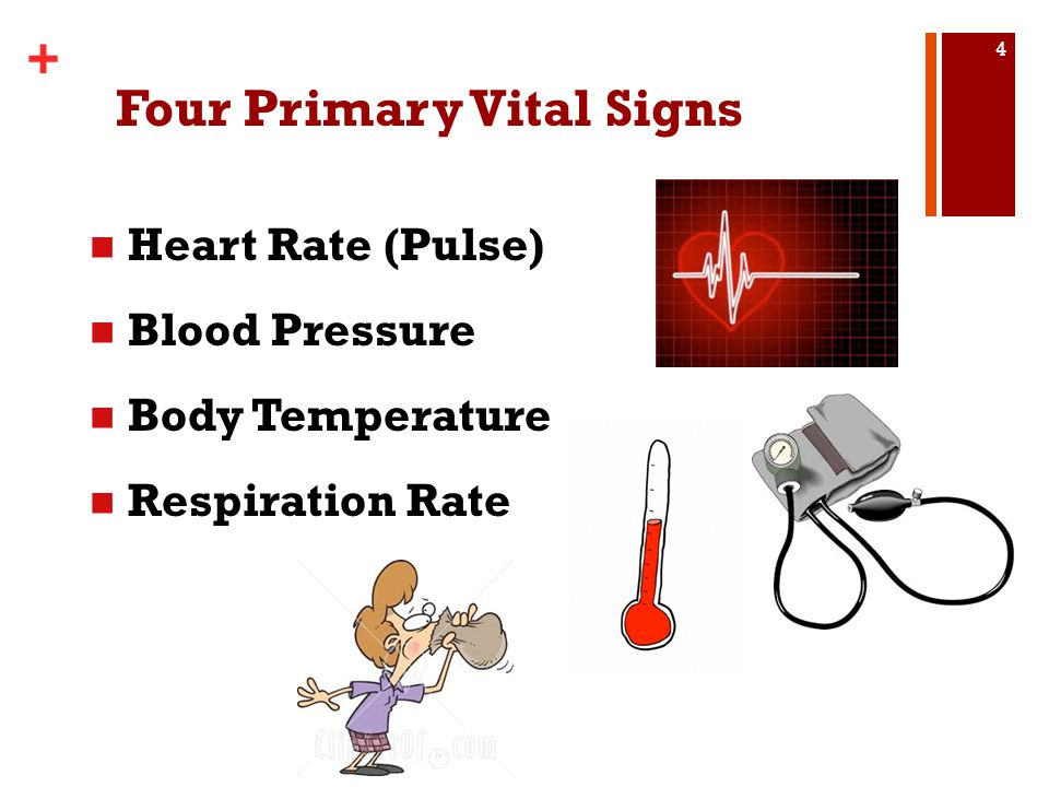 Four Primary Vital Signs