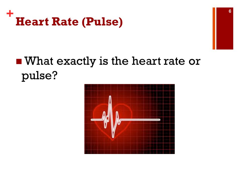 Heart Rate (Pulse) What exactly is the heart rate or pulse