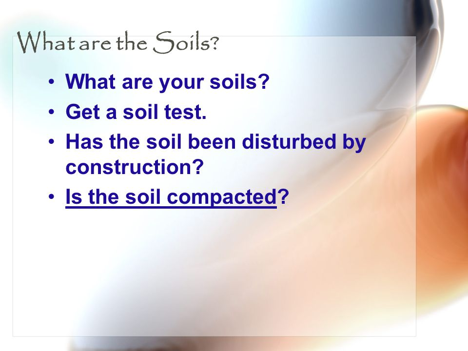 What are the Soils What are your soils Get a soil test.