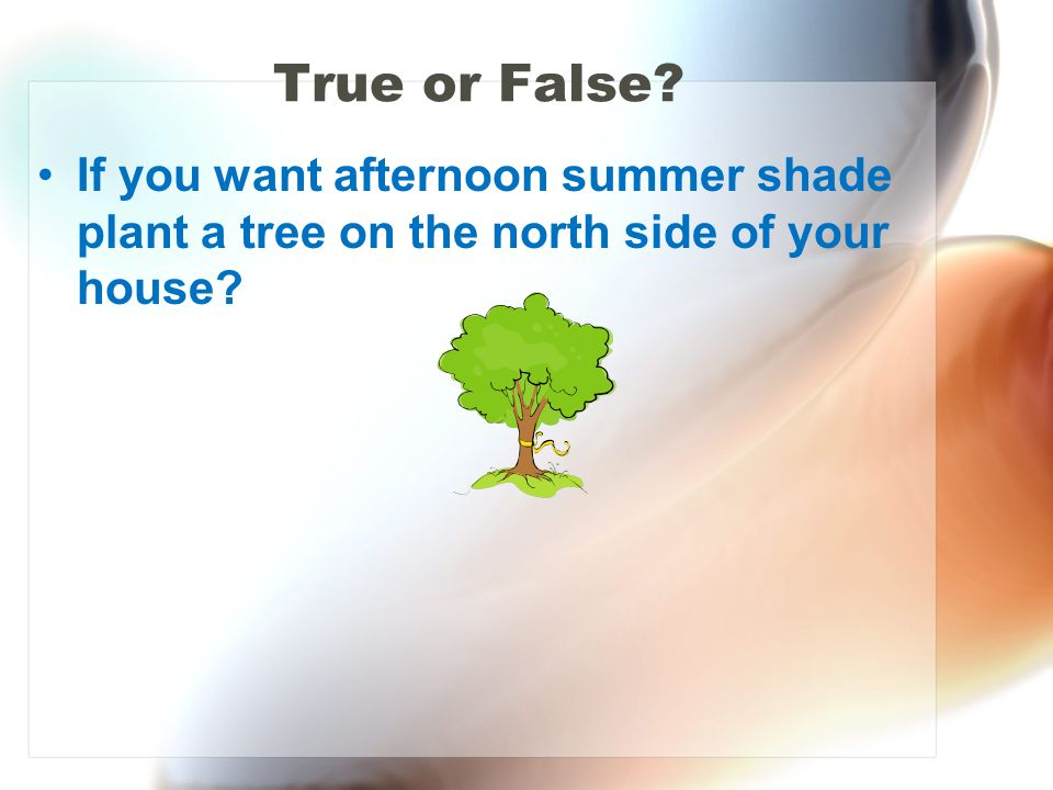 True or False If you want afternoon summer shade plant a tree on the north side of your house