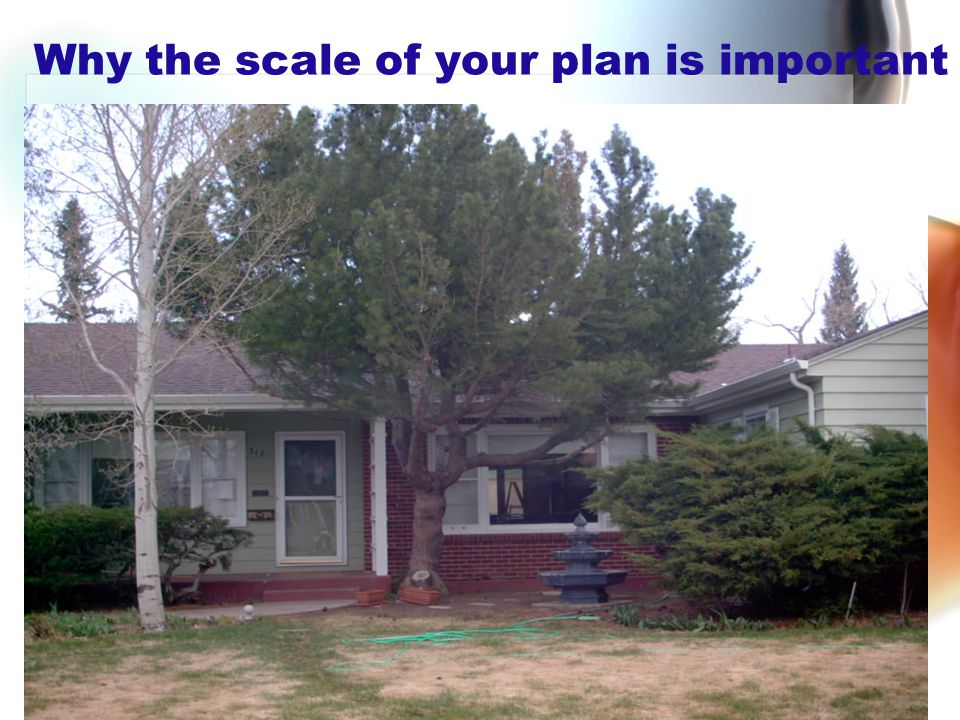 Why the scale of your plan is important