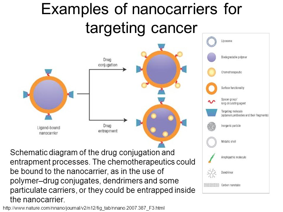Examples of nanocarriers for targeting cancer