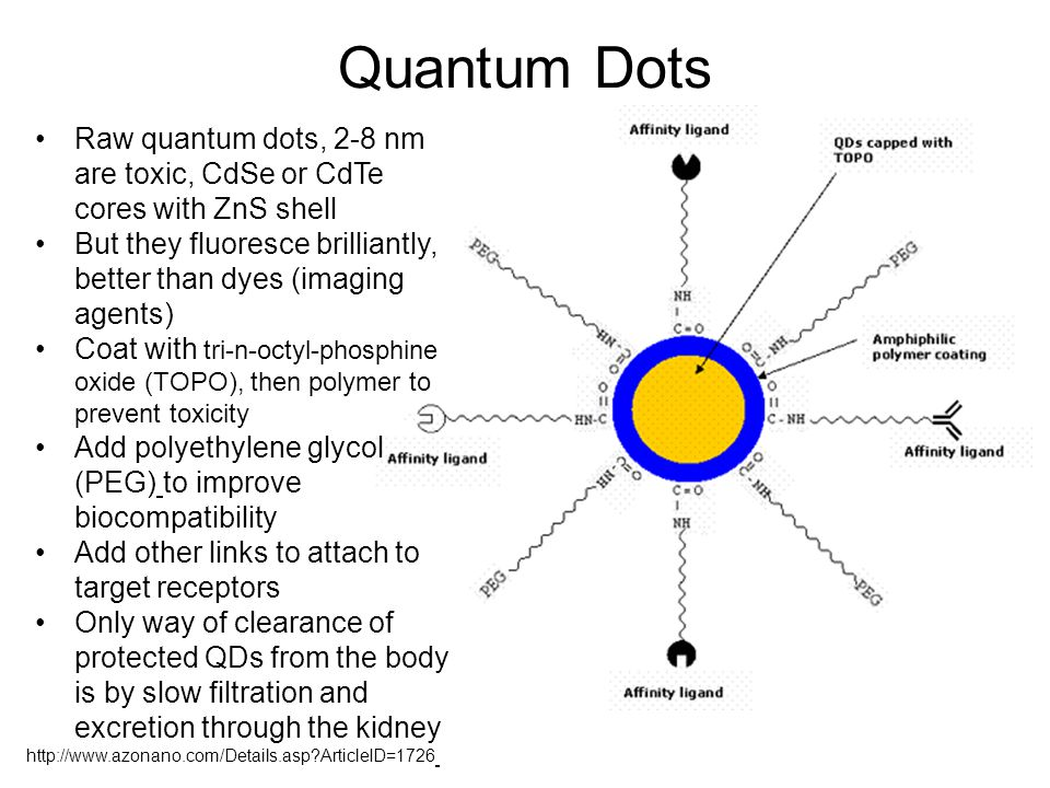 Quantum Dots Raw quantum dots, 2-8 nm are toxic, CdSe or CdTe cores with ZnS shell.