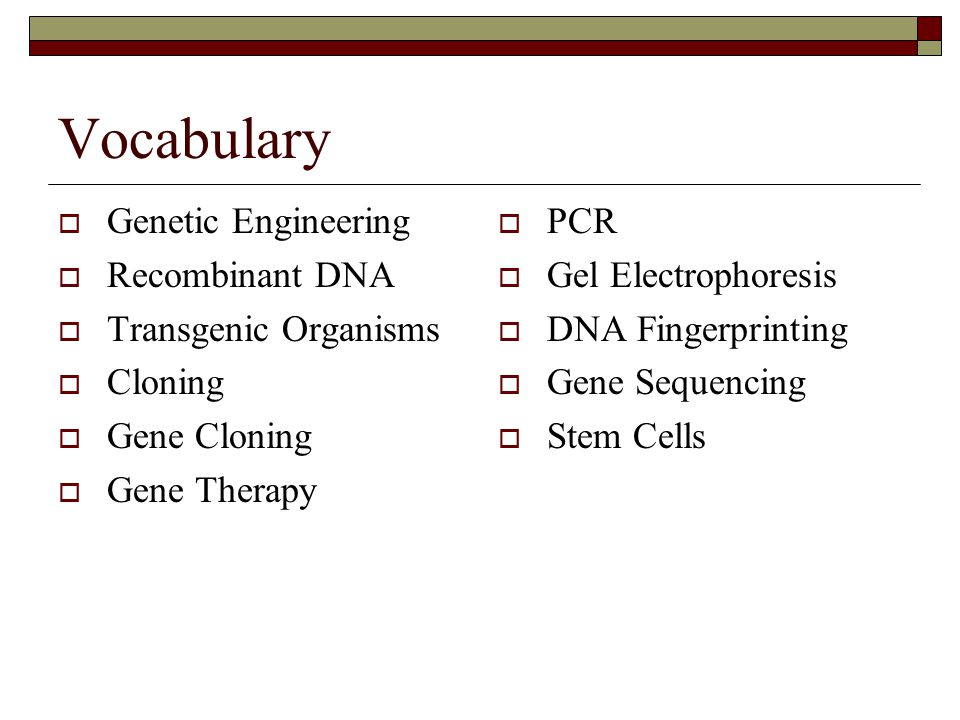 Vocabulary Genetic Engineering Recombinant DNA Transgenic Organisms