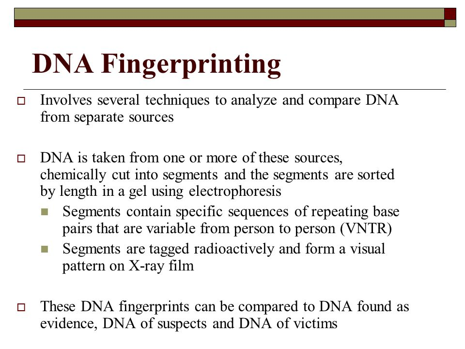 DNA Fingerprinting Involves several techniques to analyze and compare DNA from separate sources.