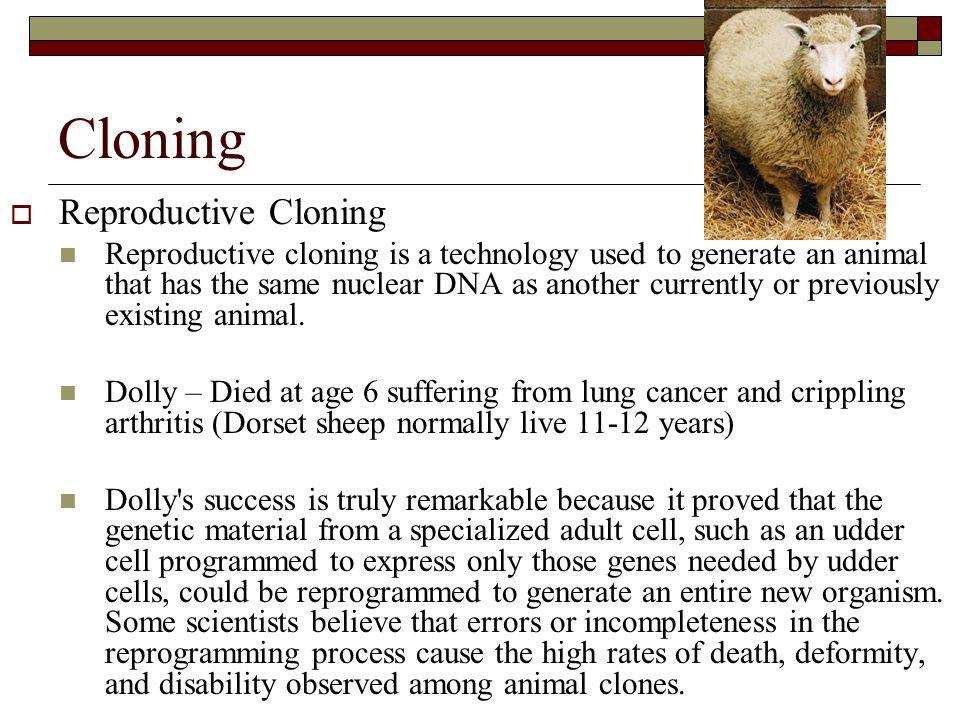 Cloning Reproductive Cloning