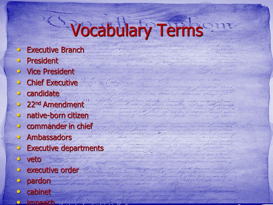 Vocabulary Terms Executive Branch President Vice President