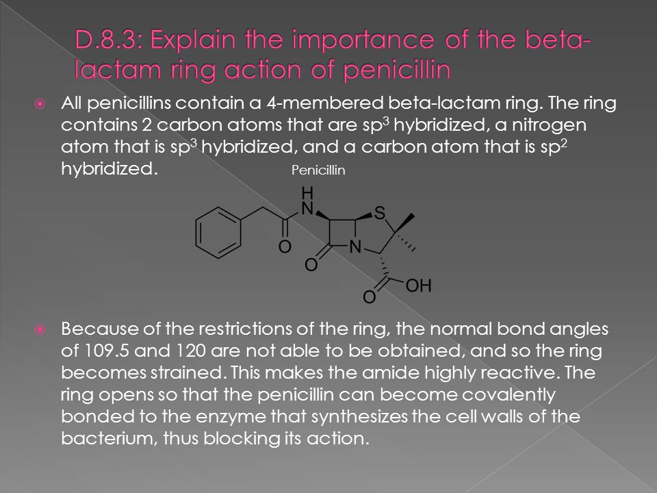 D.8.3: Explain the importance of the beta-lactam ring action of penicillin