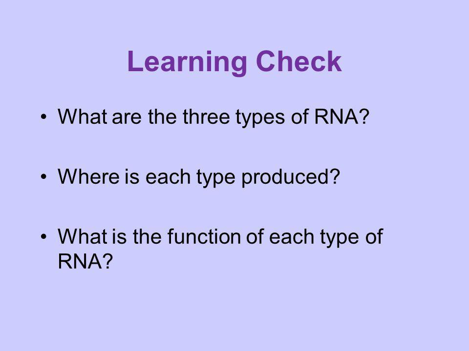 Learning Check What are the three types of RNA